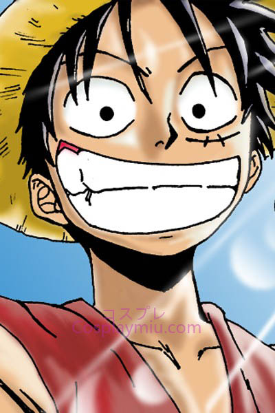 One Piece Monkey D. Luffy Korte Cosplay Pruik